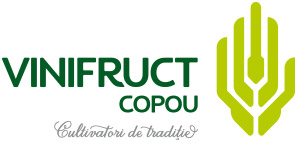 Producator fructe, Cereale - Vinifruct